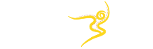 The Dancing Soul Logo
